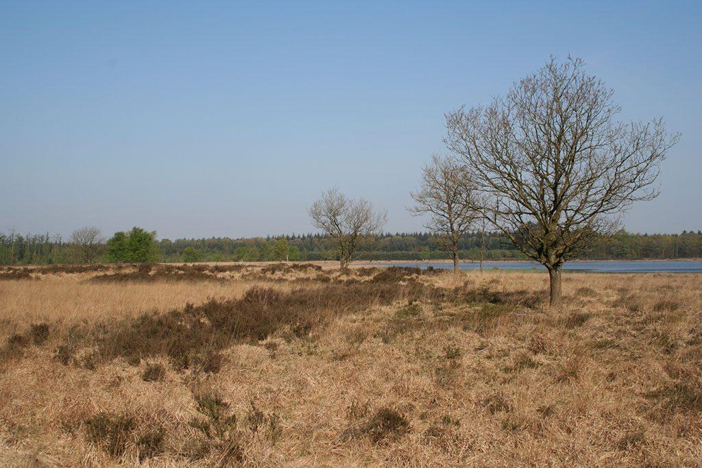 NamaStee-en-omgeving5